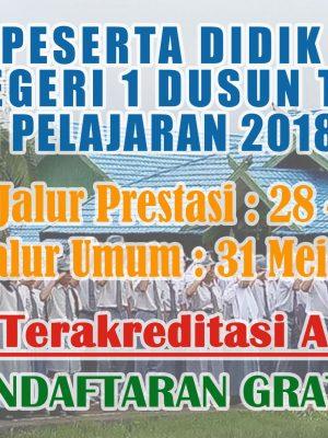 Penerimaan Peserta Didik Baru (PPDB) SMA Negeri 1 Dusun Tengah Tahun Pelajaran 2018/2019
